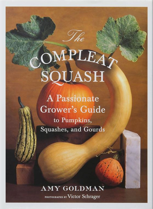 squash-featured